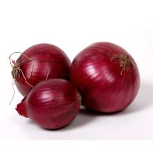 China fresh red onion, Export fresh red onion with premium quality from SeaerFarm