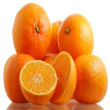 cheap Mandarin for sale