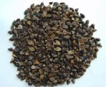 Buckwheat for sales.