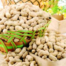 Raw Peanut Kernel for sale.
