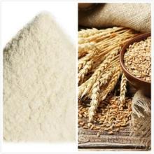 Vital wheat gluten factory supplies protein ≥85%