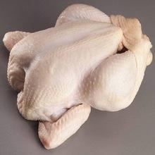 Quality Halal Chicken Feet / Frozen Chicken Paws Brazil and Argentina