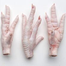 Frozen Chicken Paws, Chicken Feet supplier for sale
