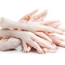 Cheap Halal Chicken Feet / Frozen Chicken Paws / Fresh chicken wings exporters