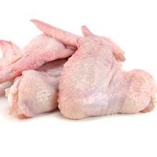 Brazilian Frozen Chicken for sale /Frozen boneless halal chicken breast