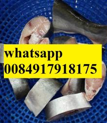 IQF frozen pangasius steak with rider bag, frozen basa steak / Supplier for frozen pangasius