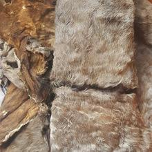 Top Quality Wet Salted & Dry salted Donkey Hides and Cow Hides, cattle Hides, animal skin, Goats, Ho