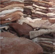 Rabbit skin , Animal Hide skin,Donkey Hides and Cow Hides, cattle Hides, for sale