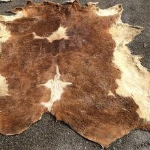 Wholesale Animal Dry And Wet Salted Skins Cow And Goat And Rabbit skin for sale