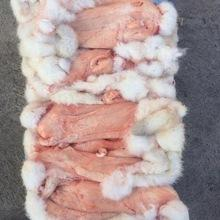 real rex Rabbit Fur / Natural Rabbit Skin / Rabbit Skin with wholesale