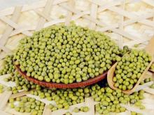Price of Dried Green Mung Beans/Masoor Dal/ Green Moong Beans
