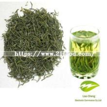 Conventional Xinyang Maojian Green Tea with Fresh Taste