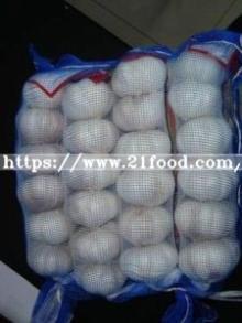 5.0cm and up Fresh Chinese Pure White Garlic