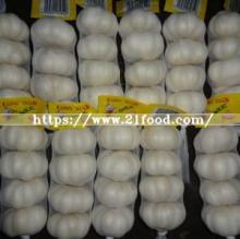 Prepacked Fresh White Garlic From China Origin