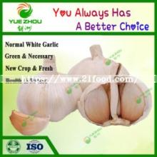 2019 New Crop China Factory  Fresh   White   Garlic  for  Sale