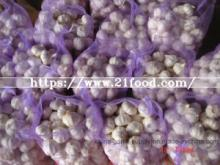 Fresh Pure Red White Export Garlic with Good Quality