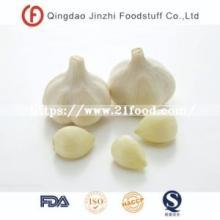 Pure White Dried Garlic Granules