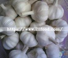 2018 Chinese Wholesale Garlic Price - New Crop, Hot Sales
