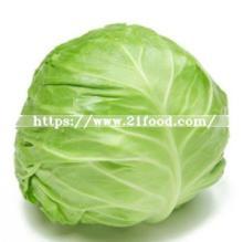 Fresh Green /  White   Cabbage