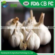 New   Crop   Garlic ,  Fresh   Garlic , Natural Normal White  Garlic