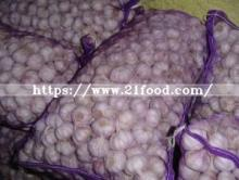 2018 Chinese Fresh Garlic G. a. P Registered