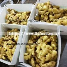 Chinese   Ginger  Price