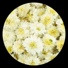 Dried Florists Chrysanthemum for Traditional Herbal Natural Flower Tea