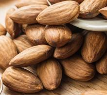 Grade A Almond Bitter Essential Oil