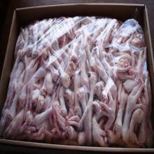 Frozen Chicken Feet, frozen beef , frozen whole chicken,